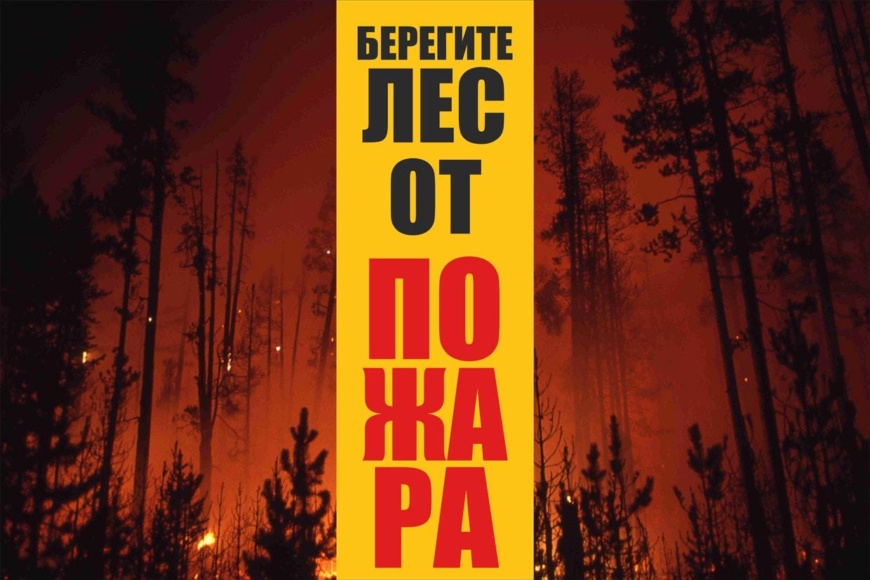 лесные пожары плакат ассортимент оригинальных настенных